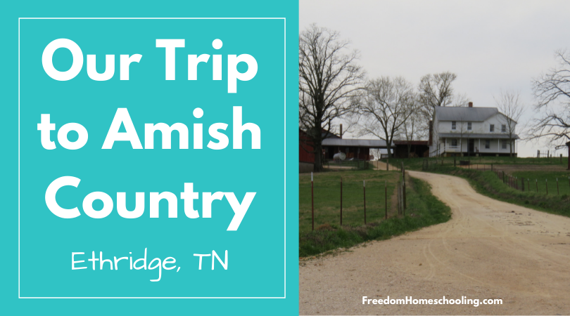 Our Trip to Amish Country